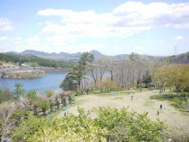 泉ボタニカルガーデン|季節の花々とダムを見下ろせる絶景スポット!